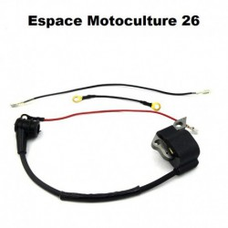 Bobine / Module d'allumage STIHL 021 - 023 - 025 - MS210 - MS230 - MS250 - 020T - MS200T