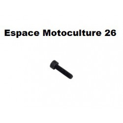 Vis d'embase de cylindre M5 x 20mm HUSQVARNA 346XP - 350 - 351 - 353