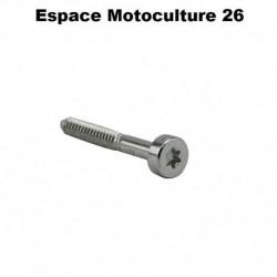 Vis Cylindrique PAS STIHL - IS-D5,3x41