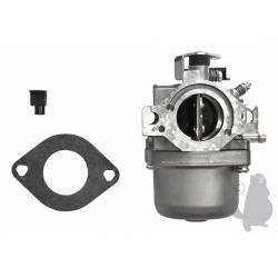 Carburateur Briggs & Stratton 799728 - Moteur 498027, 495706, 494502, 494392, 498134, 499161, 496592, 498231, 694941, 699831