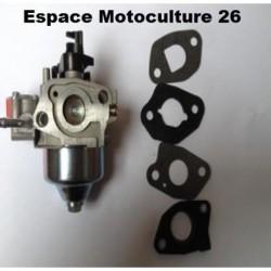Carburateur d'origine pour tondeuse à gazon HYUNDAI HTDT135CAPL