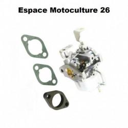 Carburateur d'origine pour moteur BRIGGS & STRATTON 715520 / 7HP / VANGUAR