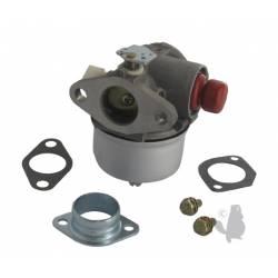 Carburateur TECUMSEH Vantage, Prisma, ELV, TVS90, TVS100, ECV100, TVS120, TVS105, TVS115, TVXL90, TNT120, LAV35 ...