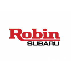 Carburateur d'origine pour Moteur ROBIN / SUBARU EX17