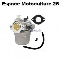 Carburateur pour Moteur BRIGGS & STRATTON 590399 - 796077