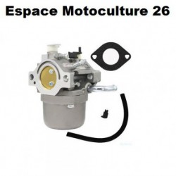 Carburateur pour Moteur BRIGGS & STRATTON OHV AVS 13,5 ch - 590399 - 593432 - 794308 - 794653 - 790021 - 790022 - 791266 ...