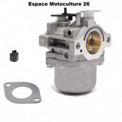 Carburateur Briggs & Stratton 799728 - Moteur 498027 - 498231 - 499161