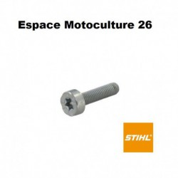 Vis cylindrique IS M5 x 20 d'origine STIHL