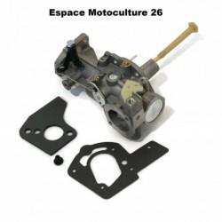 Carburateur pour Moteur Briggs & Stratton 498298 - 492611 - 495426