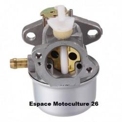 Carburateur 499059 ou 497586 pour Moteur Briggs & Stratton Serie